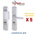 Pack COPRO - 5 ensembles de sécurité palière blindé, Héraclès Salomé™ - Argent