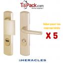 Pack COPRO - 5 ensembles de sécurité palière blindé, Héraclès Salomé™ - Champagne