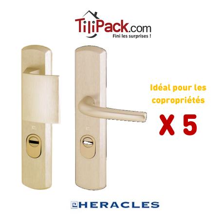 Pack COPRO - Ensemble de sécurité palière blindé, Héraclès Salomé™ - Champagne