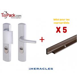 5 poignées blindées Héraclès - Argent + Cornières anti-pinces époxy marron