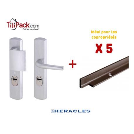 Pack COPRO - 5 packs sécurité : Poignée Blindée Héraclès - Argent + Cornières anti-pinces