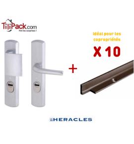 10 poignées blindées Héraclès - Argent + Cornières anti-pinces époxy marron