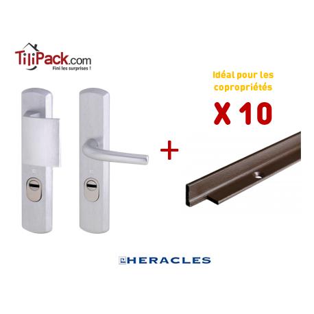 Pack COPRO - 10 packs sécurité : Poignée Blindée Héraclès - Argent + Cornières anti-pinces