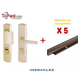 Pack COPRO - 5 packs sécurité : Poignées Blindées Héraclès - Champagne + Cornières anti-pinces