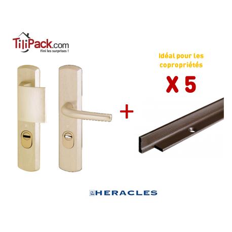 Pack COPRO - 5 packs sécurité : Poignée Blindée Héraclès - Champagne + Cornières anti-pinces
