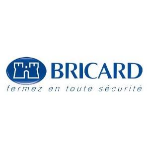 Bricard Serrures
