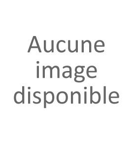 Option supplementaire pour la porte commander le 24/09/2019 : 1 couleur epoxy, pose en rénovation, poigner tirage argent